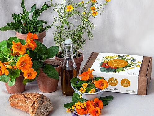 Grow Your Own Gourmet Flower Kit