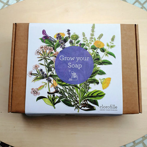 Grow your Soap kit
