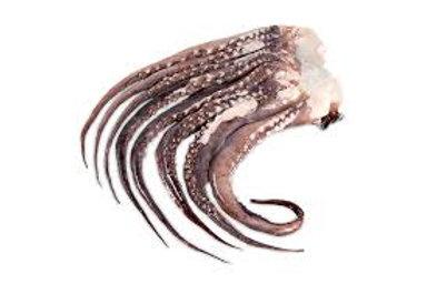Tentáculos de Potas Congelado 1kg