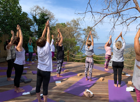 Photos Workshop Morning Yoga Detox