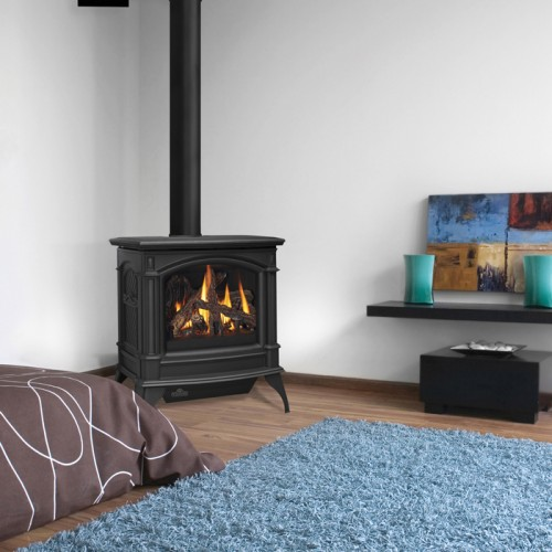 GDS60 Gas Stove Direct-Vent