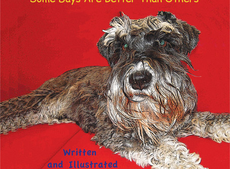 Some Days Are Better Than Others-YouTube Video Release-Sigi and LuLu Books