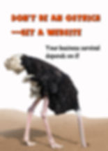 "Ostrich with head in sand and title, ""Don't be an Ostrich-Get a Website"