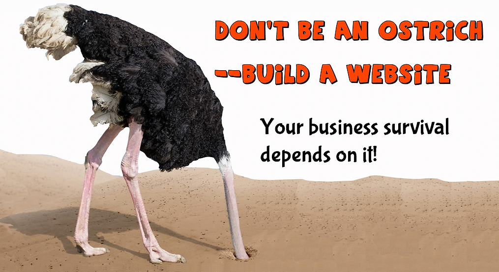Ostrich with head in sand, Don't be an Ostrick-build a website. Your business survival depends on it!