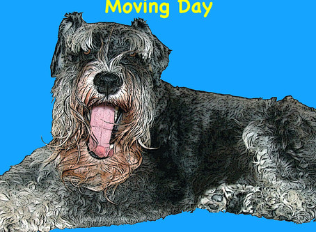 Moving Day - YouTube Video Release-Sigi and LuLu Books