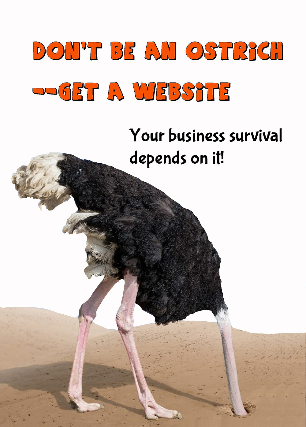Ostrich with head in sand. Title: don't be an ostrich-get a website. Your business survival depends on it.