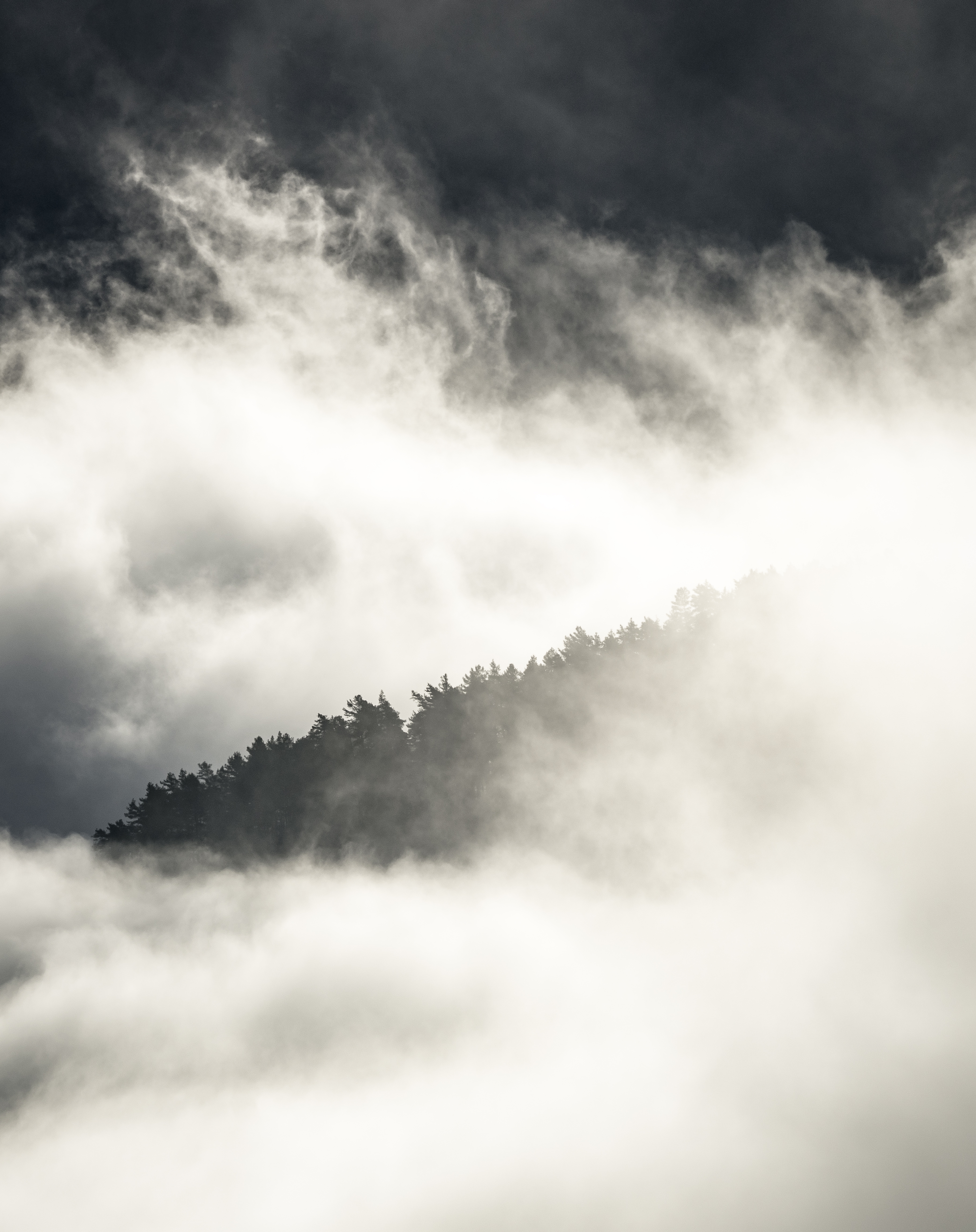 Misty Morning 1 Luster