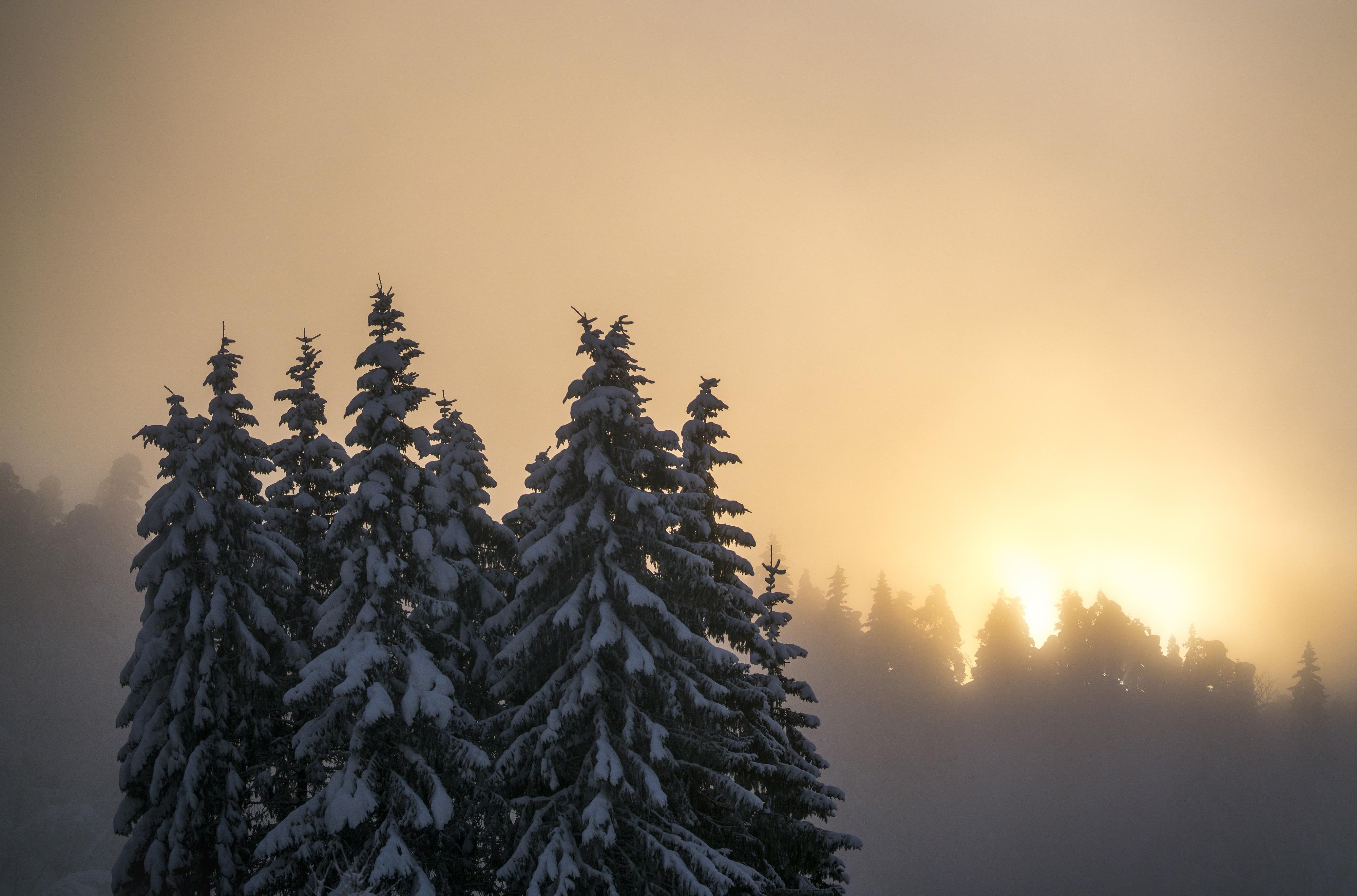 Winter light at Hafslo