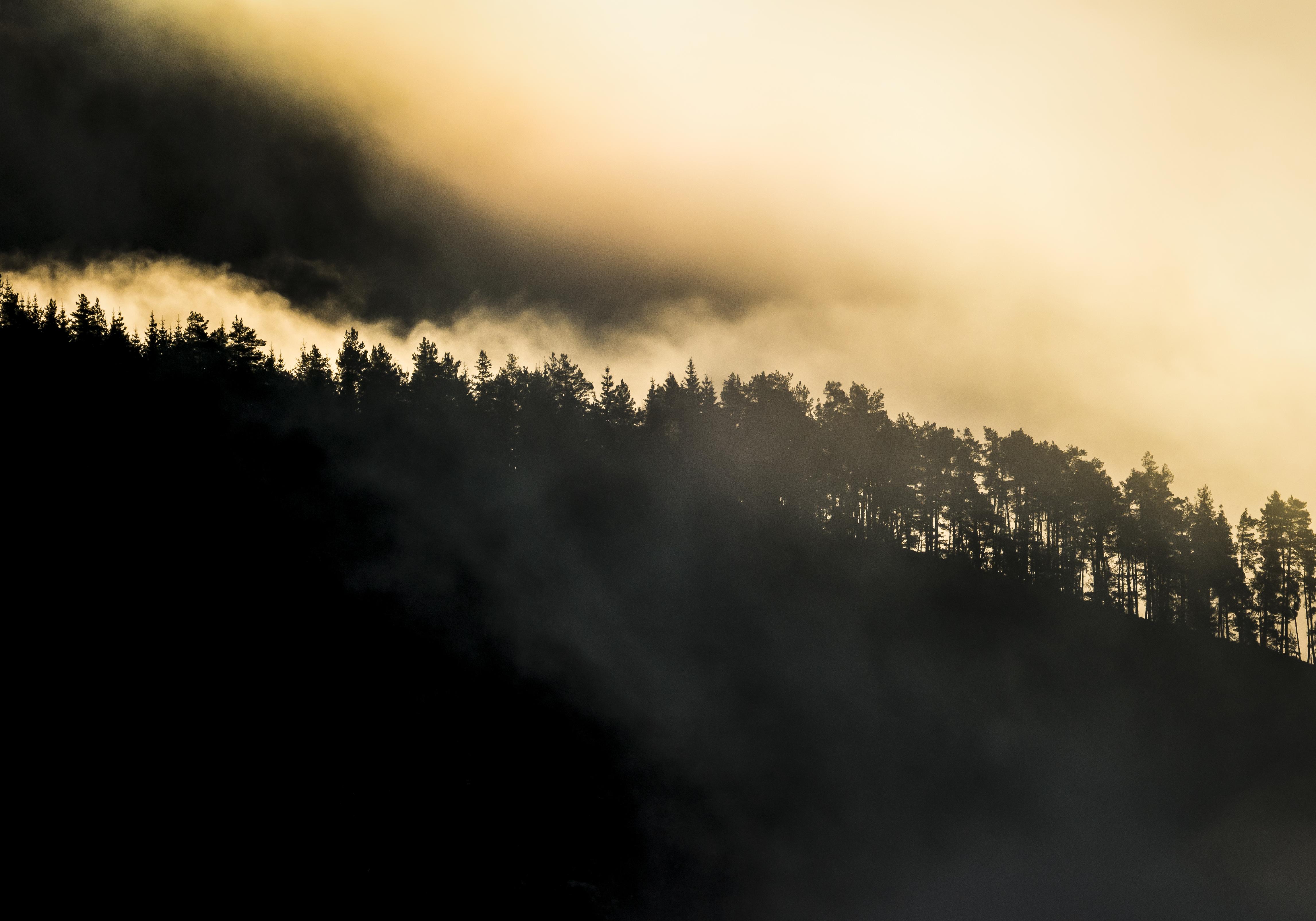 Misty Morning 2 Sogndal