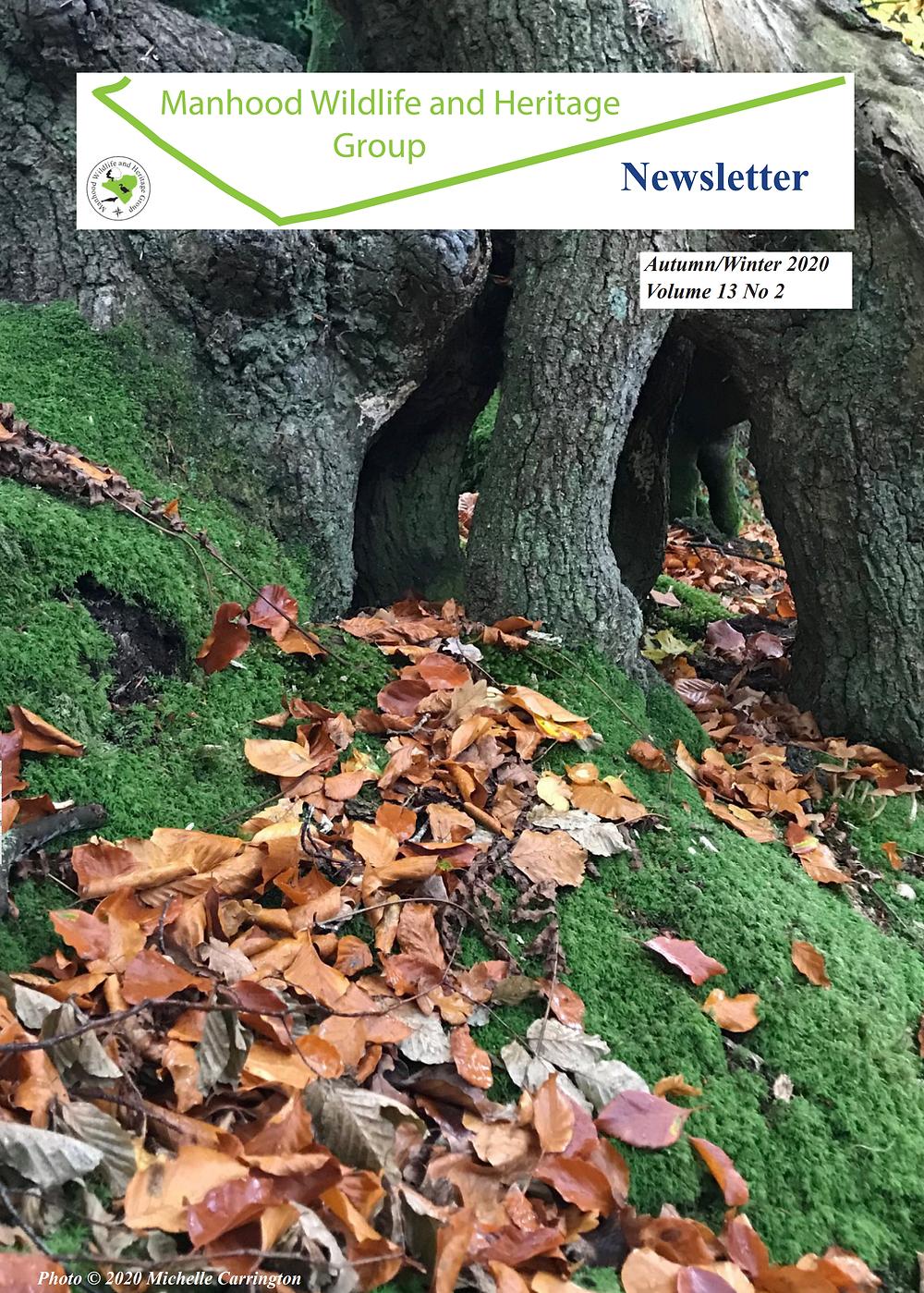 Autumn Winter Newsletter 2020 Cover