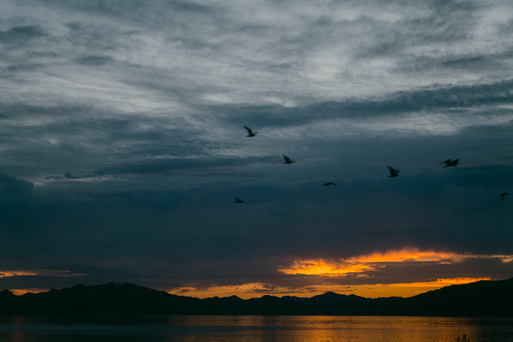 Sunrise captured over the water at Lake Mead national recreation center, birds fly over the lake with dark blue stormy clouds, captured by las vegas photographer hayway films
