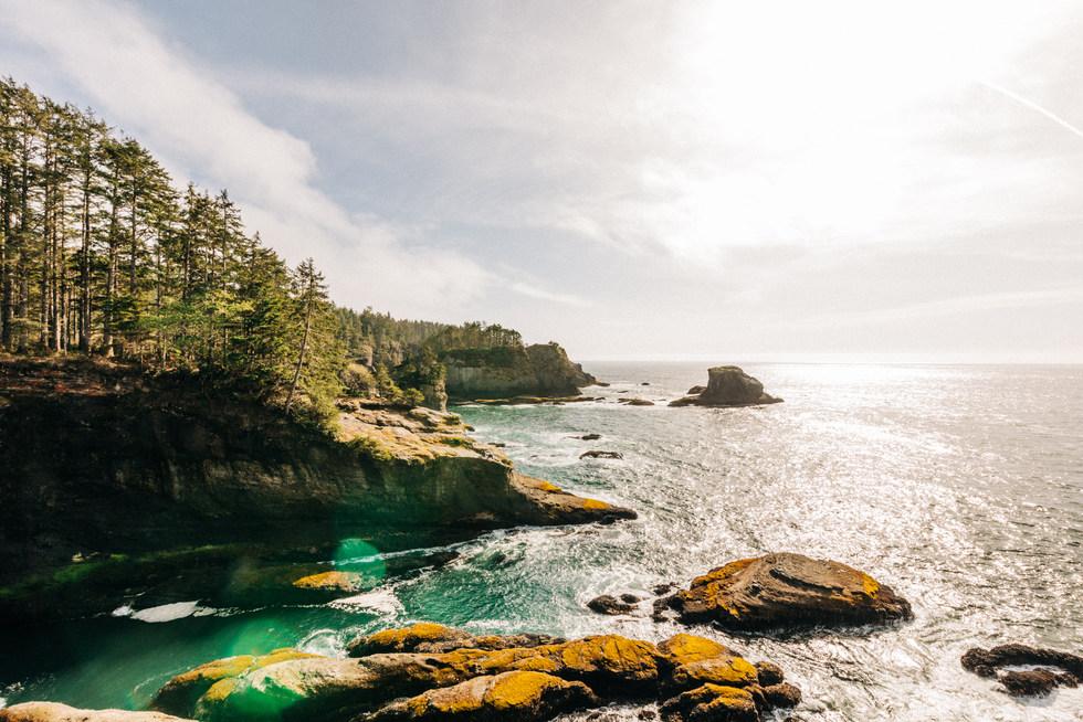 Washington State Coastline