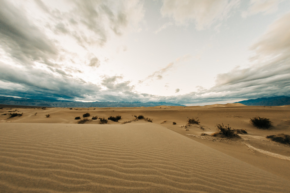 A cloudy sky with wavy yellow sand dunes reaching far and wide. Captured by las vegas wedding photographer hayway films.