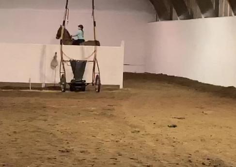 Live LessRose Tree Farms   Fox Valley Riding Academyon 2.mp4
