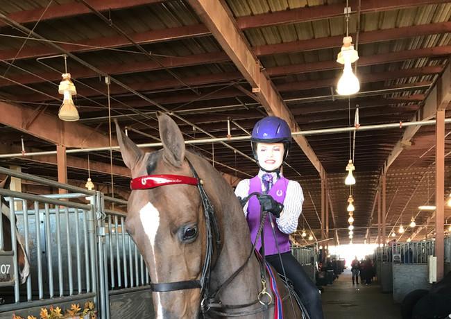 Rose Tree Farms   Fox Valley Riding Academy
