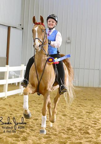 ILFall19-ACAD1-B7Rose Tree Farms | Fox Valley Riding Academy045-Amy Bargenquast-web