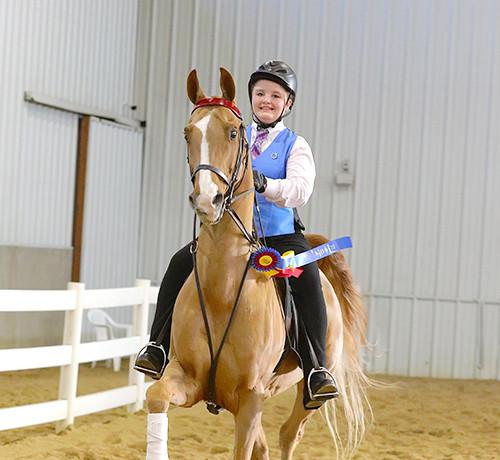 ILFall19-ACAD1-B7Rose Tree Farms   Fox Valley Riding Academy045-Amy Bargenquast-web