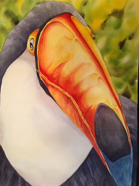 Toucan, Watercolor.jpg