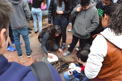 DeVargas Middle School, Planting Lesson