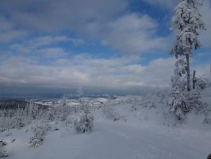 Zima_nad_Moravicí.JPG