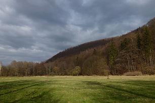 Údolím Moravice.JPG