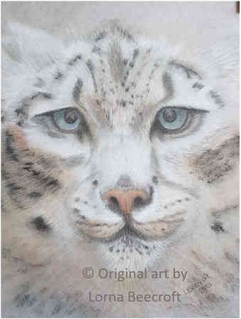 Snow Leopard *SOLD*