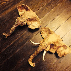 Elephant Sculptures - Clay