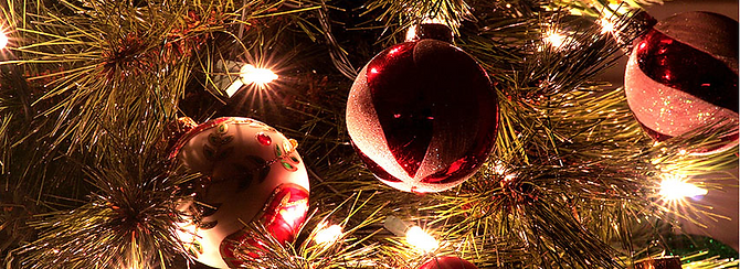 Christmas Banner photo page.png