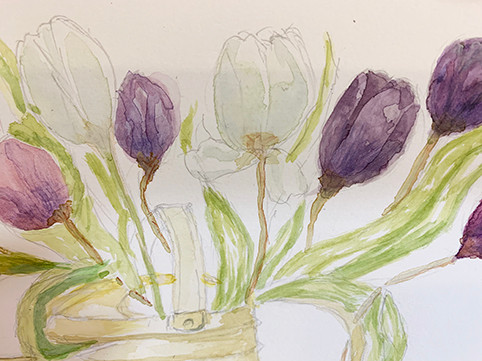 Tulips by Jayne.JPG