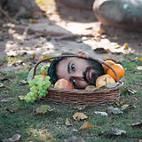 Face fruit Photo manipulation Inside Mot