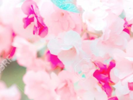 春のヘアケア