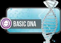 基礎DNA