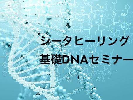 基礎DNAセミナーリクエスト受付中!!