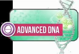 応用DNA