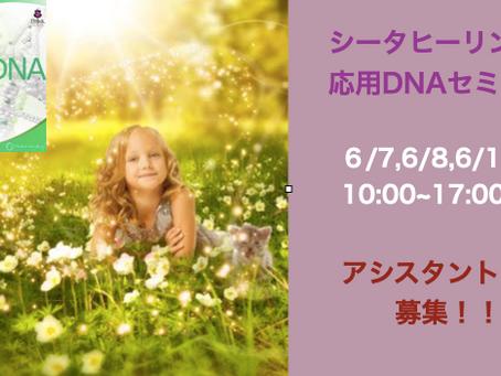 6/7,6/8,6/15 応用DNAセミナー開催!