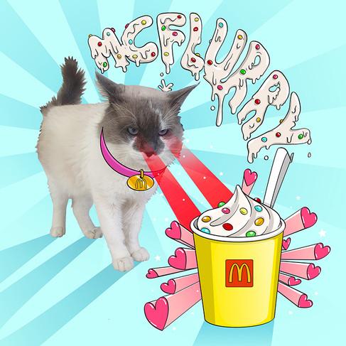 McFlurry ok.jpg