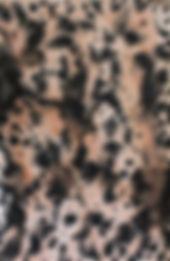 Tamana S.H. Djuya