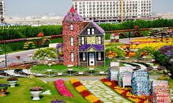 парк цветов дубай