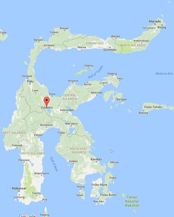 Service Genset Sulawesi