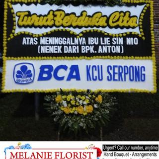 BCA Lie Sin.jpg