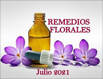 7 Seminario de REMEDIOS FLORALES. Julio