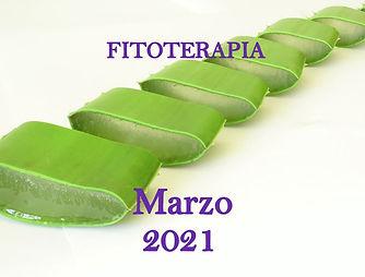 3 Seminario de FITOTERAPIA Marzo 2021. F