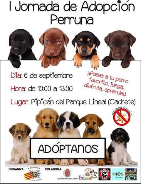 Jornada pro adopción Cadrete