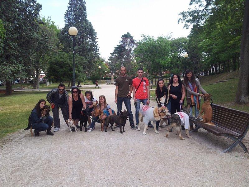 Primer paseo Zarposo de Espolones