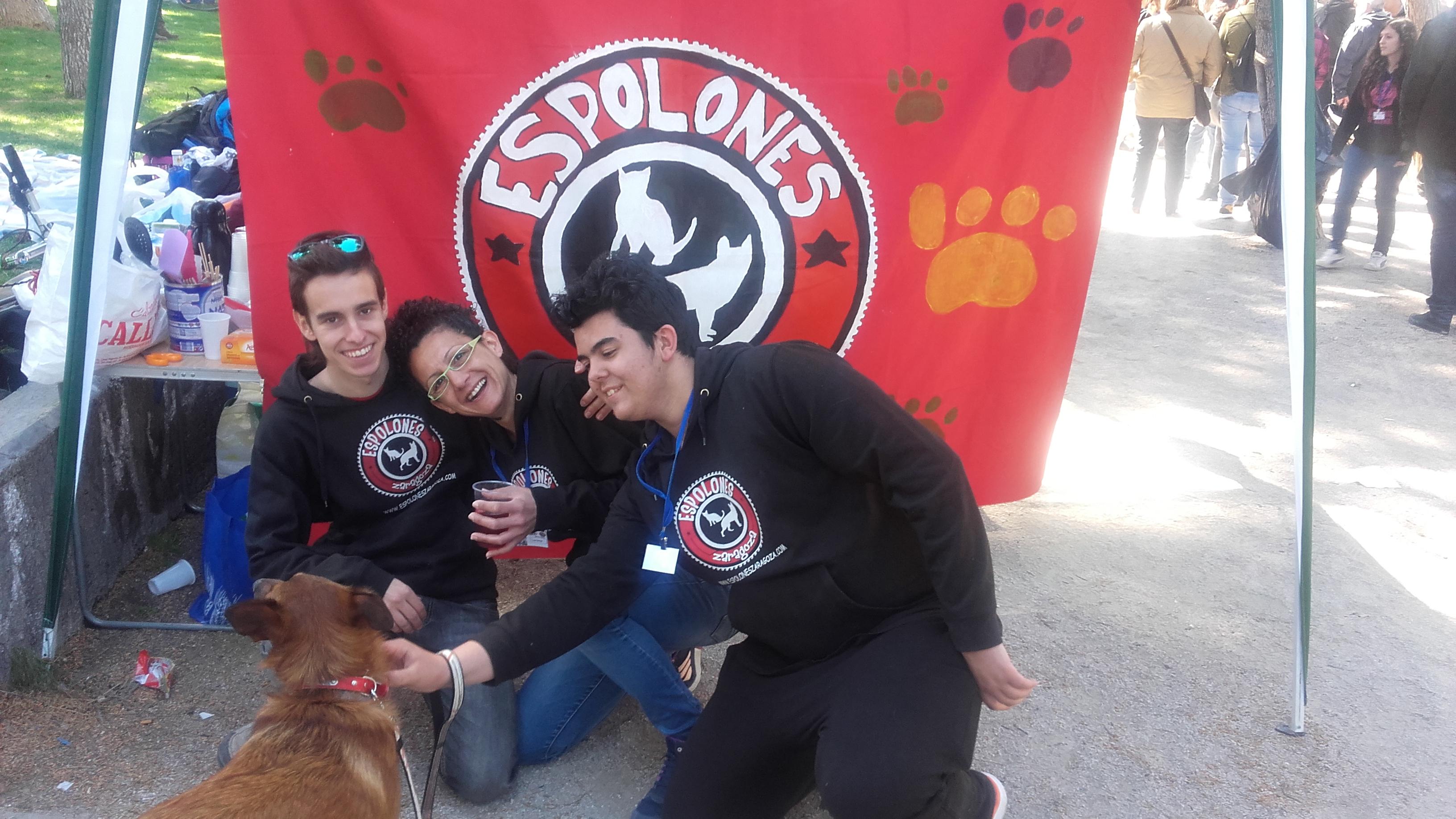 2/4/2016 Fiesta del Sol