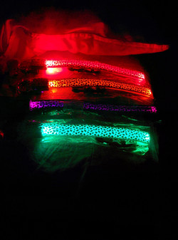 collares led