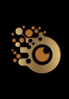 nikalyte logo black.png