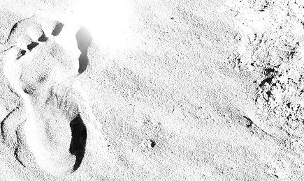 footprint B&W.jpg