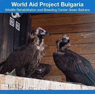 World aid by cycling Project Bulgaria