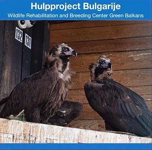 Hulpproject op de fiets Bulgarije